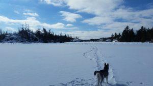 bwca winter wonderland